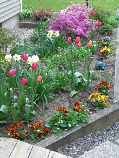 Mom's garden2