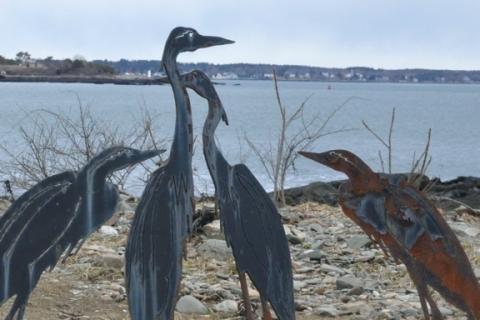 Portsmouth birds 2