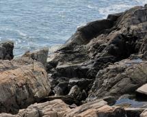 rocks enhanced 2 w