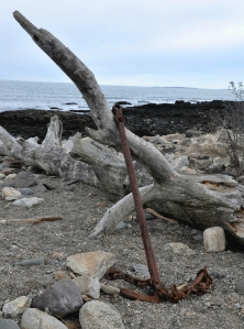 driftwood anchor enhanced