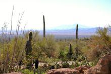 Arizona skyline